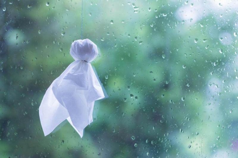 雨の日にこそ、モデルハウスへGO!!