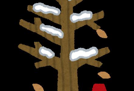 冬の恒例行事