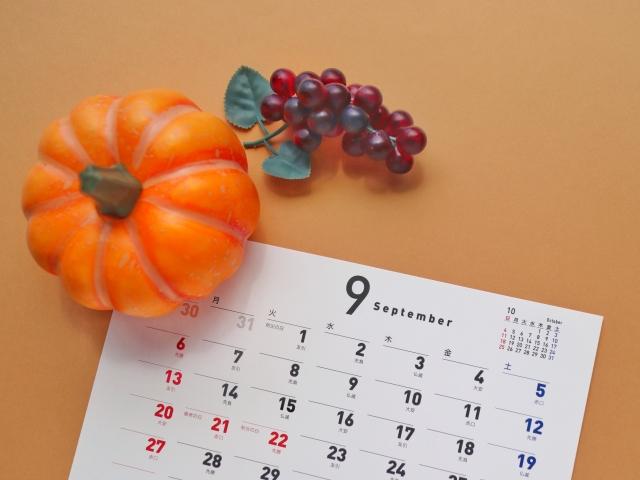 今年の秋は・・・